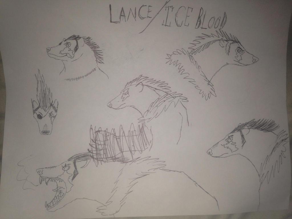 Lance the polar bear by vulcanfirelizard75