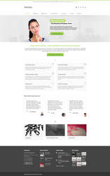 Avamys Wordpress Theme