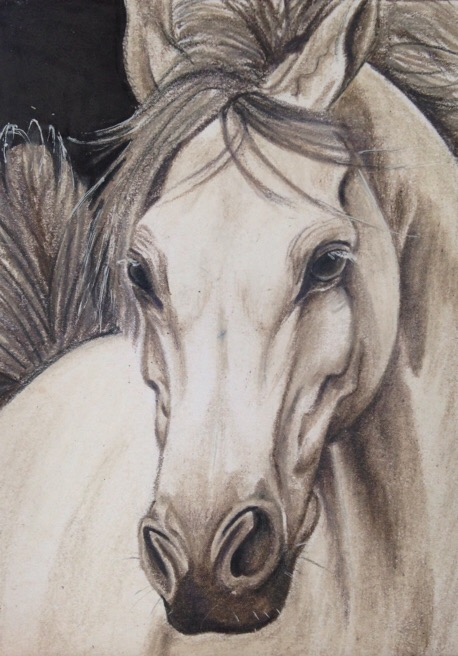 ACEO: French Grey by DanielleMWilliams