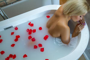 Rose petals by wphotography
