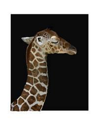 Baby Giraffe WIP by Cornish-Ninja