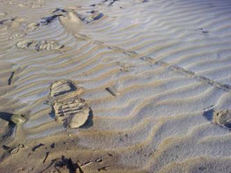 Frozen Sandprint by Cornish-Ninja
