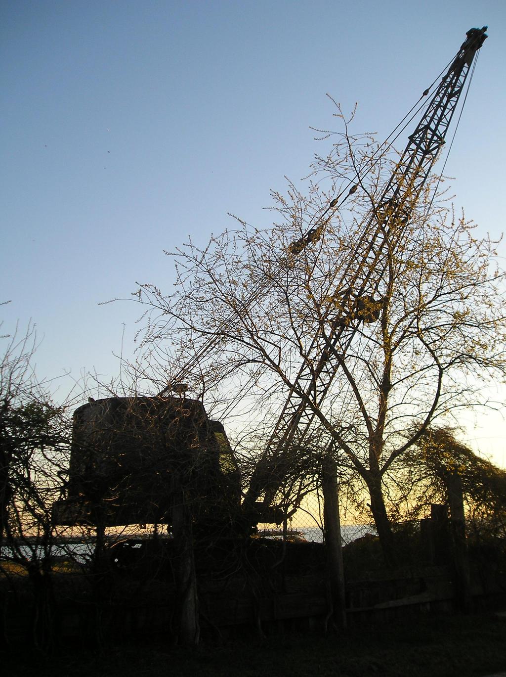 Crane by Programmer64