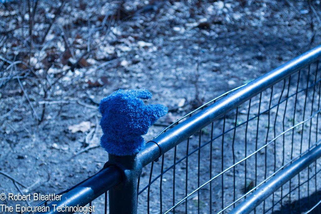 Feeling  Blue by Programmer64