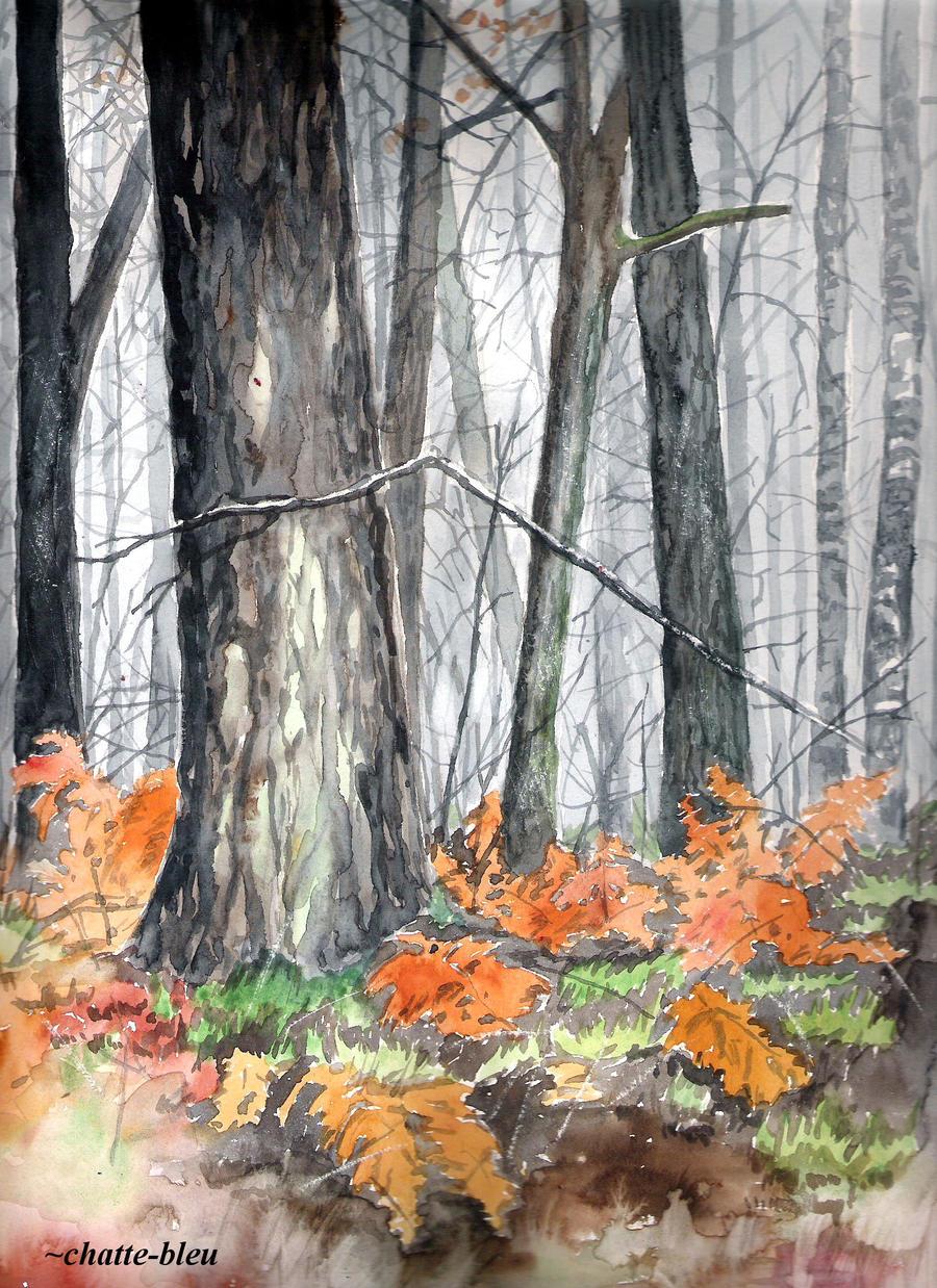 W lesie by chatte-bleu