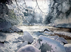 Zima 8