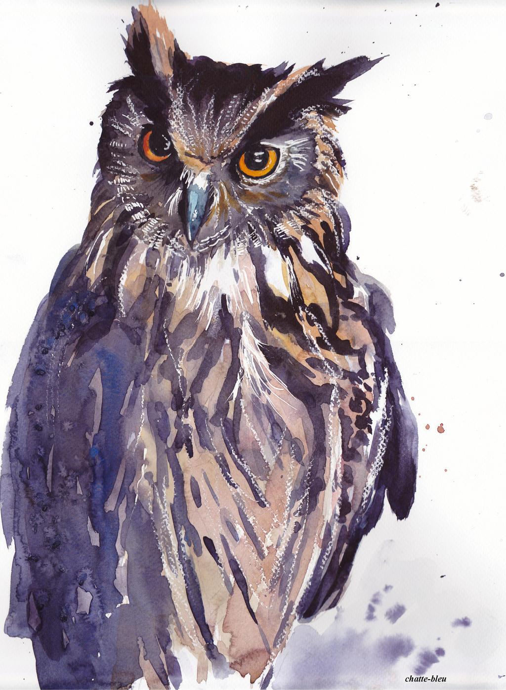 Ptaki 15