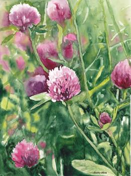 Kwiaty 23