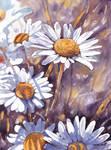 Kwiaty 28