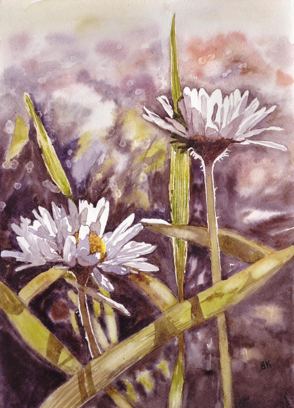 Kwiaty 43
