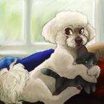 Harley Dog by gabapple
