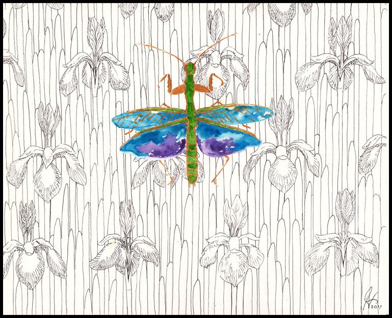 Iris Mantis by SineSquared