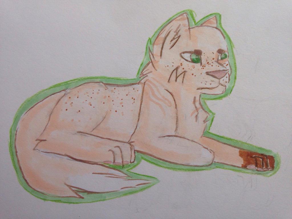 Cactusdog Avatar