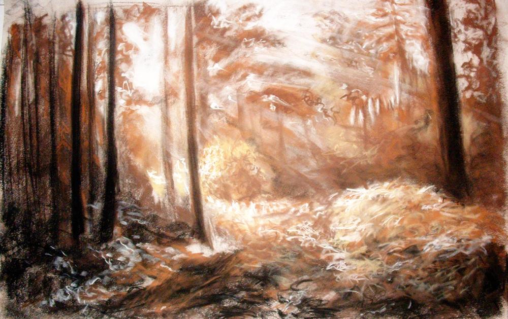 Quiet Light by Piebaron