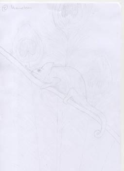 Chameleon - 26-04-2011 -sketch