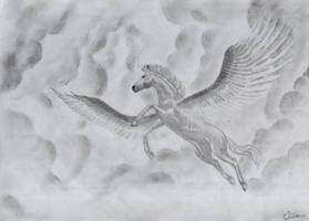 Pegasus - 17-06-2012 -