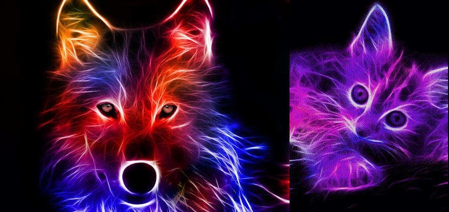 Neon Animal Backgrounds Neon Animals Anime