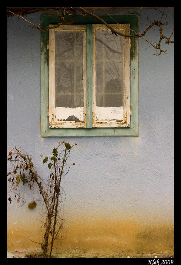 Prozori koji govore Secret_Window_by_Klek