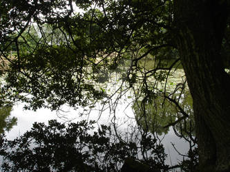 Just Around the Riverbend (3)