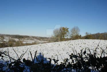 Snowed in (8) - Beyond the Hedge