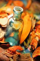 Trivia and bottle by Anti-Pati-ya