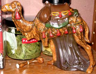 Nativity Camel - Front