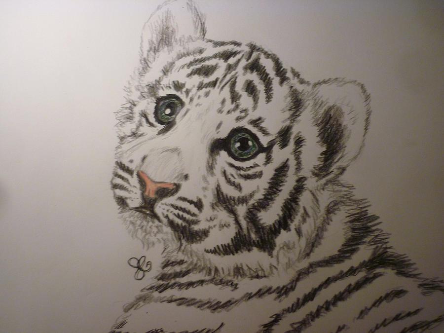 Gezeichneter Tiger