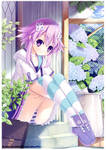 Kamijigen Game Neptune V Artbook Promo