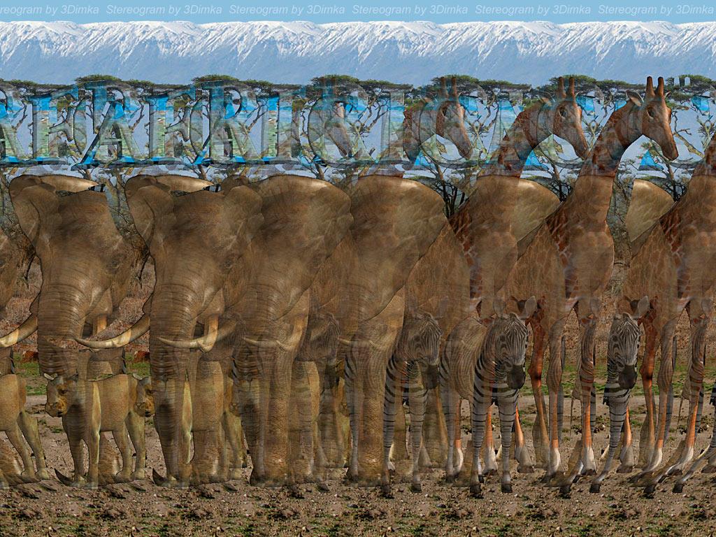 Stereogrami Africa_3D_Stereogram_by_3Dimka