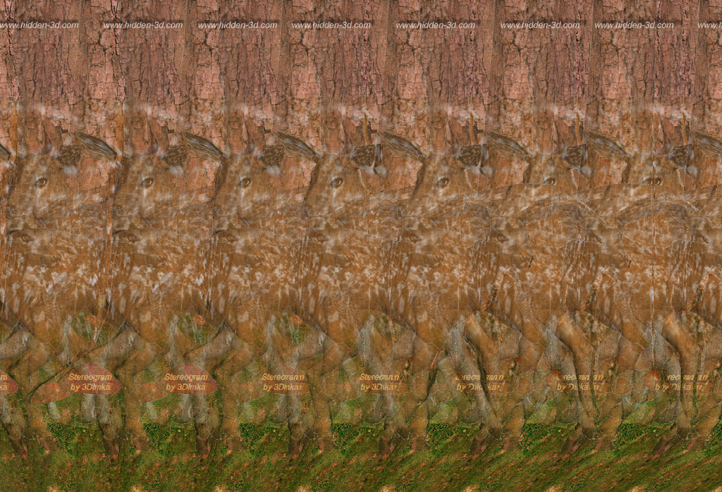 Deer Forest Stereogram by 3Dimka