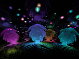 Enter the Dreamtime Wilderness