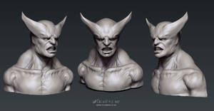 Wolverine: Sculpt