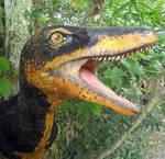 Deinonychus 2