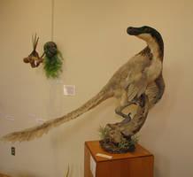 Velociraptor by Book-Rat