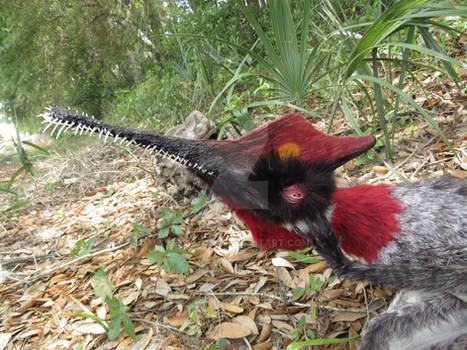 Gnathosaurus closeup