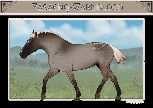 Yasaeng Warmblood #126