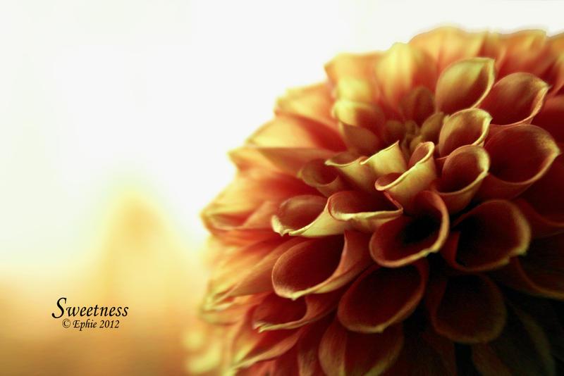 Sweetness by Epheme