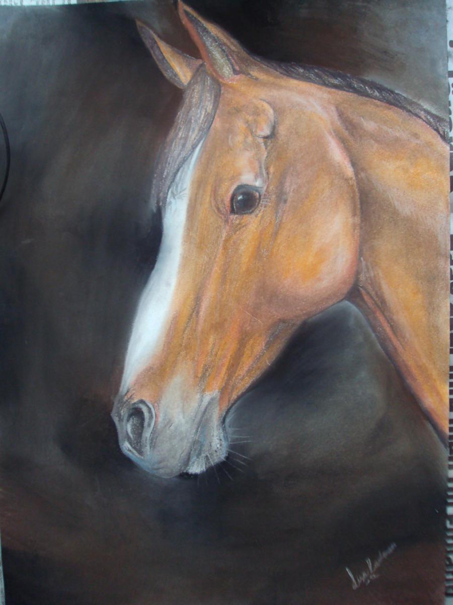 Pastel portrait by Wiensia