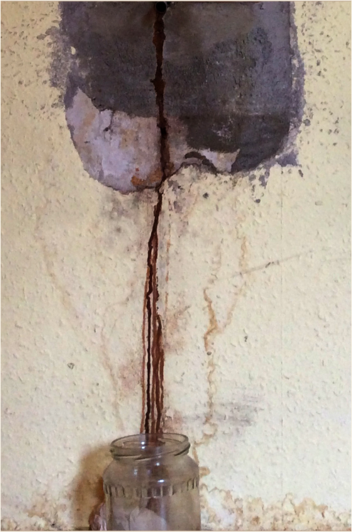 the profane grail by doyo