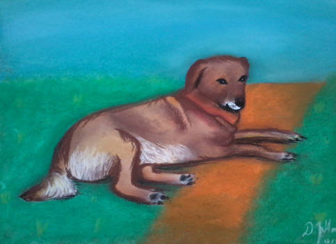 Grandmother's dog Max
