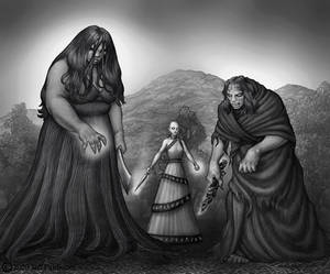 The New Gray Sisterhood
