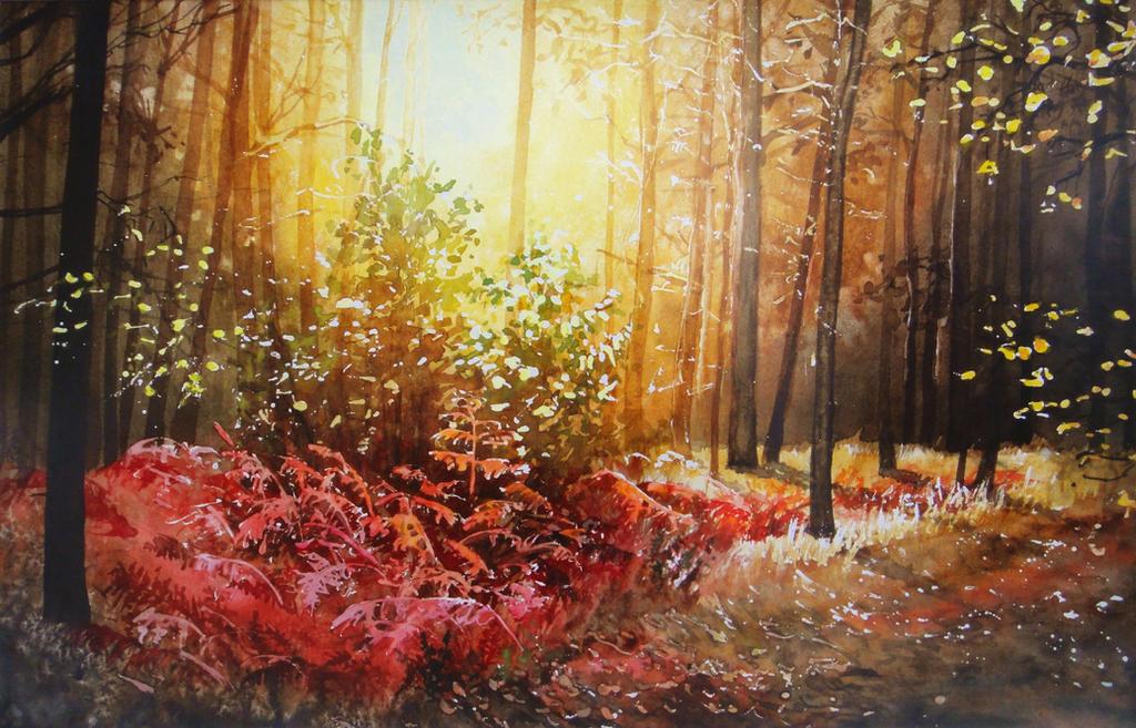 Autumn lights by JoaRosa