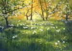Dandelions by JoaRosa
