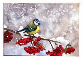 Holiday Card Project 2016 by JoaRosa
