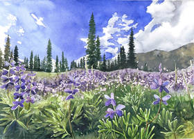 Violet meadow by JoaRosa