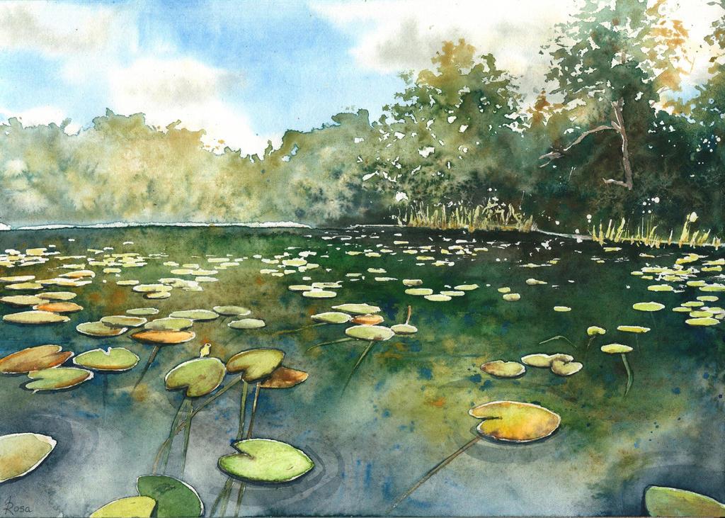 Hidden lake by JoaRosa