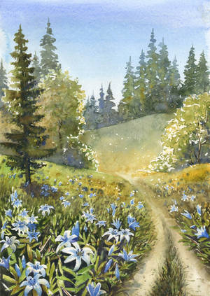 Valley of blue lilies by JoaRosa