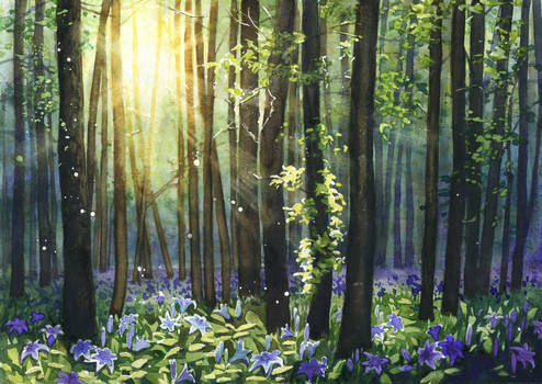 Blue lilies forest