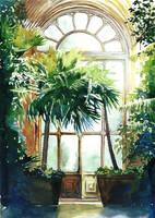 Palm tree by JoaRosa