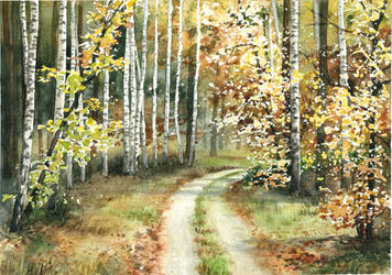 Birch forest by JoaRosa